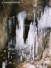 Niektóre zimowiska nietoperzy strzeżone są przez utrudniajace wejście sople lodowe.